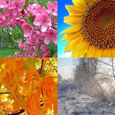seasons[1]